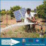 Nessuna CC 12V Water Pump Solar Pump di Need Controller