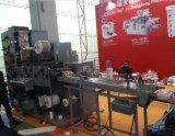 Flexo Kennsatz-Drucken-Maschine mit stempelschneidenem und aufschlitzendem 320/480