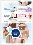 Rehabilicare 침술 EMS 10 기계