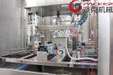 800 Bph 5 Liter van het Water die van de Fles Automatische Lopende band vullen