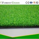 人工的な泥炭の卸売のためのGfnの草の製品