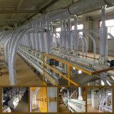 160t/24h商業小麦粉の工場のためのコンパクトな小麦粉の製造所