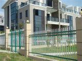 Rete fissa d'acciaio galvanizzata giardino decorativo elegante di alta qualità 5-5 di obbligazione