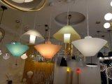 Lâmpadas decorativas internas modernas acrílicas da iluminação IP20 do pendente para o quarto