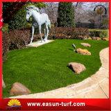 يرتّب مرج اصطناعيّة لأنّ حديقة بيتيّ عشب اصطناعيّة