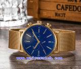 腕時計の人の標準的な水晶ステンレス鋼の腕時計(WY-G17016A)