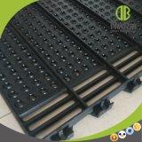 Vloer 600*600mm van het Gietijzer Populair in de Uitstekende kwaliteit van de Varkensfokkerij