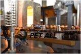Máquina de soplado de botellas de bebidas para botellas de 500ml 330 ml