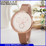 Stainless Steel Watch Classic Business Ladies' Watch (Wy-091D)