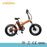 安い価格のための36V 250Wのハブモーター電気脂肪質のバイク