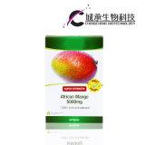 Dünner afrikanischer Mangofrucht-Auszug nehmen 100% natürliche das Gewicht-Verlust-Kapseln ab