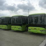 10 tester elettrici classici del bus turistico del bus con il sistema di batteria
