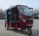 電気200ccは1500Wの3つの車輪の乗客の三輪車を開く