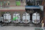 45T/H Les fabricants de filtre à eau pour l'usine de traitement de l'eau potable