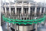 De automatische Lijn van de Machine van het Flessenvullen van het Huisdier van het Water Bottelende