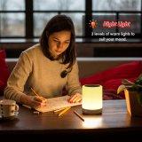 Colorare l'altoparlante a comando a tocco cambiante di Bluetooth della lampada di umore (OG-JBL-07)
