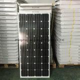 Facile installer les panneaux légers solaires bon marché de garantie de 50W 100W 150W 200W