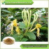 Acido di /Chlorogenic della polvere dell'estratto dei fiori di Honeysuchle