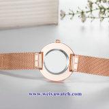 OEM Custom Mesdames montres quartz wist, Lady alliage Watch (WY-17040)