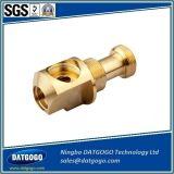 Encaixe de mangueira hidráulico de bronze de bronze do encaixe de tubulação de Pex da compressão
