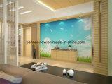 Бумага стены ткани сопротивления скреста печатание передачи тепла относящая к окружающей среде