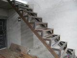 Barra d'acciaio galvanizzata di T per la costruzione di edifici (FLM-HT-035)