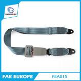 Fea015 회색 색깔 간단한 2개 점 차량안전 시트 좌석 안전 벨트