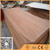 3X7 voeten een Natuurlijk Vernisje Plb/PA van de Rang van Linyi