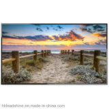 Monitor comercial del LCD de la pantalla al por mayor de HD