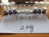 Peptídeos direto de fábrica Tb500 para recuperação muscular