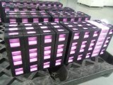 Führende Technologie und hoher Zuverlässigkeits-Batterie-Satz von China