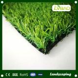 PE van pp het Materiële Kunstmatige Gras van het Landschap van de Fabriek van China ISO