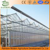 中国は販売のための温室を組立て式に作った