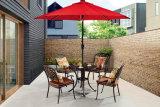 屋外/庭/テラスの藤または鋳造アルミの椅子HS3173c