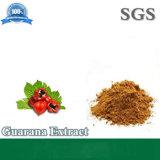 Extrait de guarana poudre Fatory fabricant directement d'alimentation
