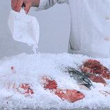 Macchina di fabbricazione di ghiaccio della fetta di buona qualità per frutta fresca