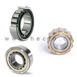 Il cuscinetto assiale cilindrico del cuscinetto a rullo N/Nu/NF/Nj/Nup/Ncl/Rn/Rnu sceglie la doppia riga