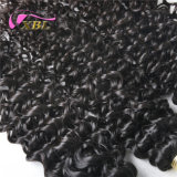 Оптовые цены на заводе Xbl полного Cuticle норки волос вьющихся волос