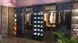 De nieuwe Moderne Kast van de Garderobe van de Slaapkamer van de Deur van het Glas
