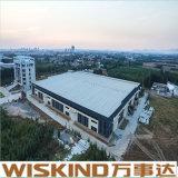 Gruppo di lavoro d'acciaio del magazzino della costruzione della struttura dell'H-Acciaio