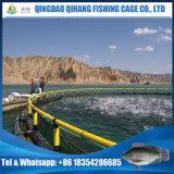 Gabbia per la piscicoltura, gabbia di acquicoltura dei pesci