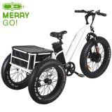 48V 500W de tres ruedas bicicleta eléctrica con el neumático Fat