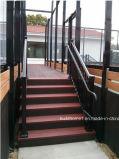 Inferriata residenziale di alluminio nera della piattaforma dell'appaltatore di HD