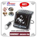 디지털 돼지를 위한 수의 초음파 스캐너, 산양 양, 개, 고양이과, 농장 동물 및 작은 동물, 애완 동물, etc.