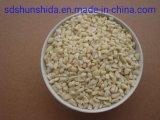 """"""" Grupos de amendoim 2019-2020 melhor qualidade de Nova Colheita Venda quente de Linyi China"""