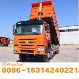 De beste Voorwaarde Gebruikte Vrachtwagen van de Stortplaats HOWO met de Kipper van 12 Wielen met Nieuwe Emmer op Hete Verkoop in de Markt van Afrika