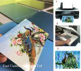 Высококачественный алюминиевый лист сублимации красителей для передачи тепла