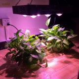 El verdadero poder de la planta de luz LED de la Mazorca crece