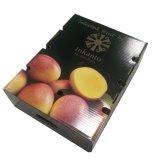 Frutas de papel caixa de papelão ondulado