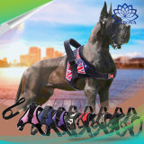 De kleurrijke en Regelbare Leiband van de Hond voor de Grote Uitrusting van de Hond van de Toebehoren van het Huisdier